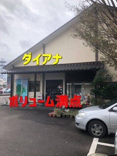 【宮崎】西都市 洋食喫茶「ダイアナ」ボリューム満点ランチを食べてきた