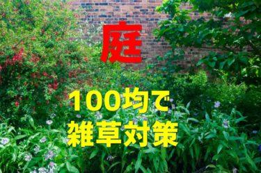 【100均】ダイソー商品を使った300円で出来る庭の雑草対策