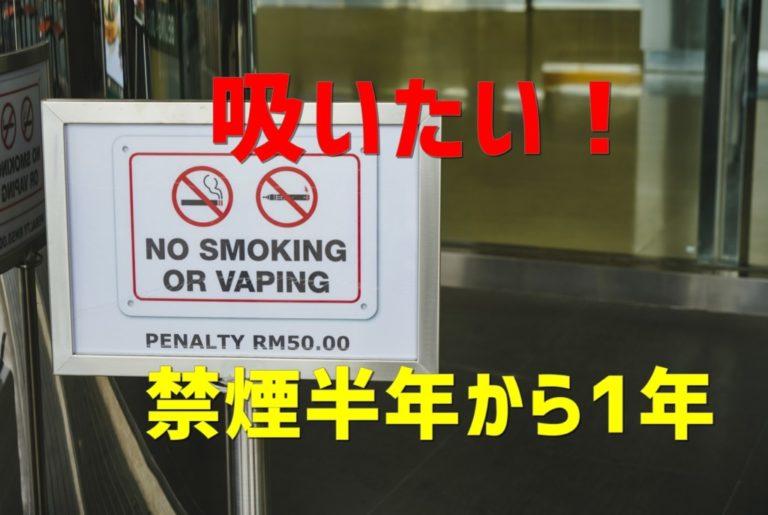 【禁煙1年達成】ヘビースモーカーだった私の禁煙の成功談ブログ⑤~禁煙半年から1年~